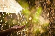 April Showers - Grand Prize Promotions