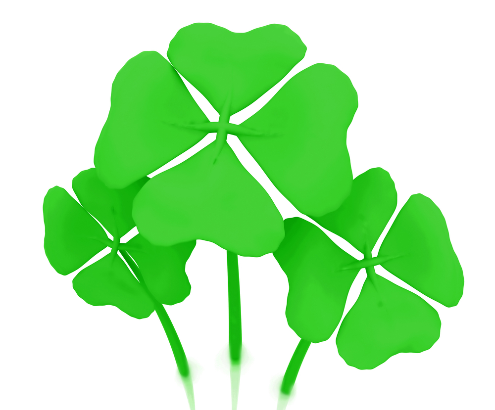 Green clovers isolated over a white background
